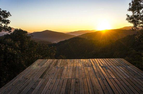 Masia El Puig : zona de relax en el bosque