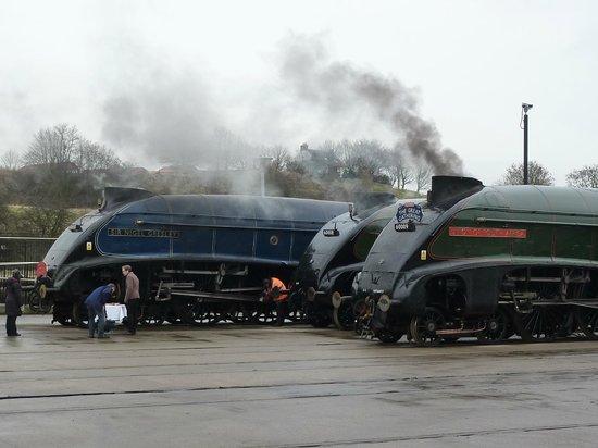 Locomotion: The National Railway Museum at Shildon: The Big Gathering Feb 2014