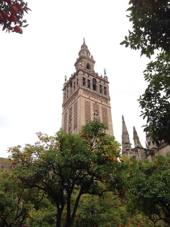 Giralda: The tower from the courtyard