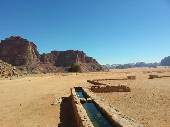 Wadi Rum Sky - Tours and Camp: Laurence Spring