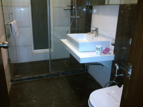 Jasmine Boutique Hotel: Good fittings in the toilet