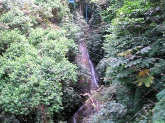 Rainforest Adventures: WATER FALLS IN THE RAIN FOREST