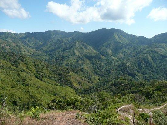 Finca Buena Vista: Aussicht