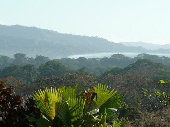 Finca Buena Vista: Aussicht von der Terasse