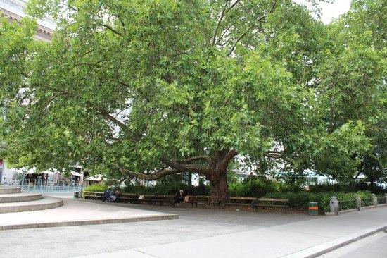 Ringstrasse: Рингштрассе - улица парков и скверов