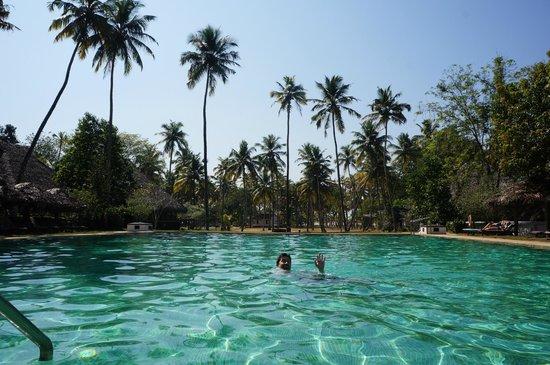 Marari Beach Resort: Main pool