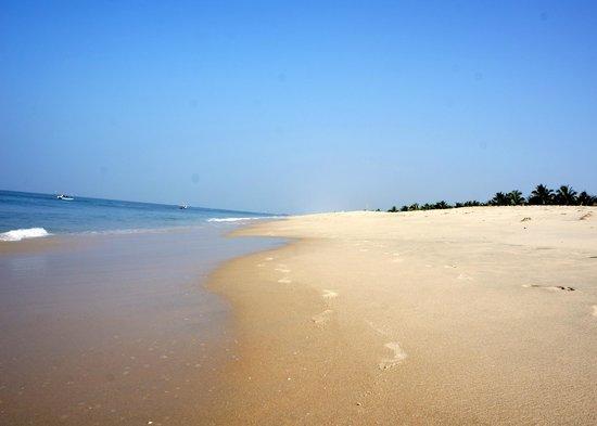 Marari Beach Resort: Beautiful beach
