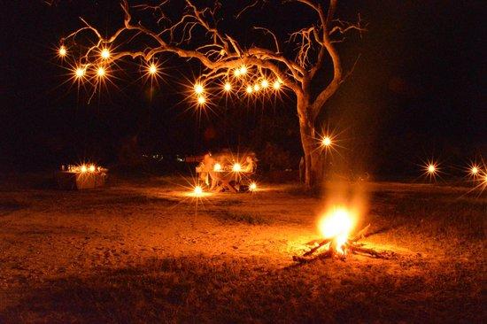 Wilderness Safaris Vumbura Plains Camp: Special Dinner in the Bush