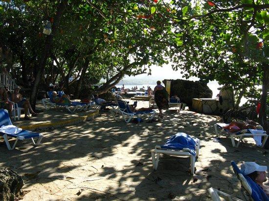 Casa Marina Beach & Reef: shady area along the water front