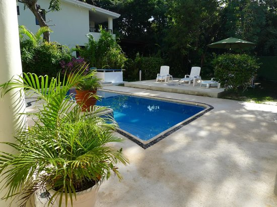 Playa Caribe B&B: Very private