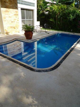 Playa Caribe B&B: Pool to cool off in.