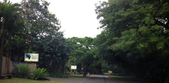Ndiza Lodge and Cabanas : Quiet street