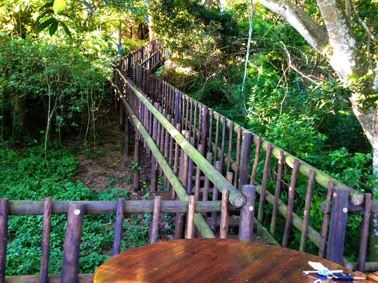 Ndiza Lodge and Cabanas: Deck in the jungle