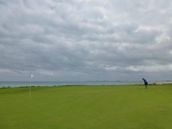 Puerto Cancun Golf Course: 14 green