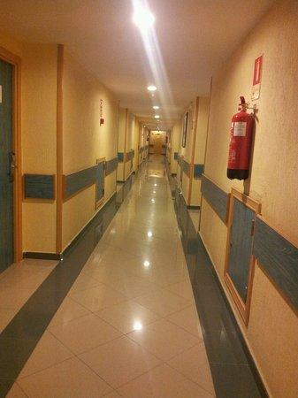 Sol Pelícanos Ocas: Corridor