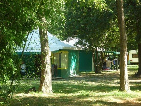 Camping du Lion : kiwis - bungalows toilés