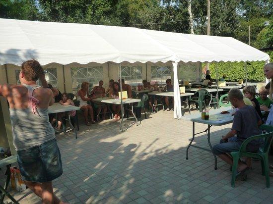 Camping du Lion : Terrasse restaurant