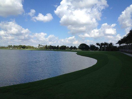 Trump National Doral Golf Course: #10