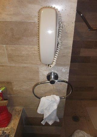 Gamma by Fiesta Inn Campeche Malecon : Téléphone dans la salle de bain / Chambre 309 -  8 février 2014.