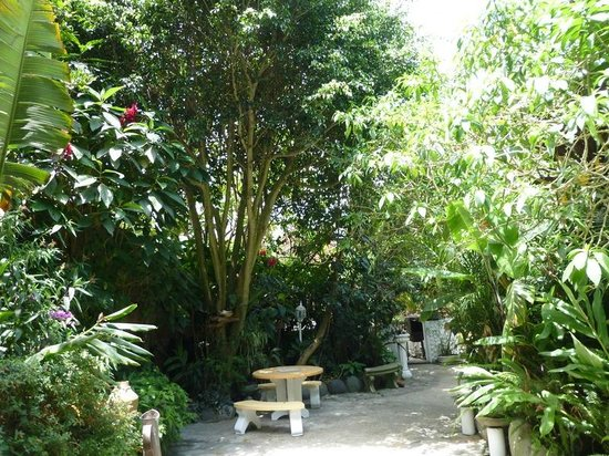 Hotel Mariane : Beautiful grounds and seating areas