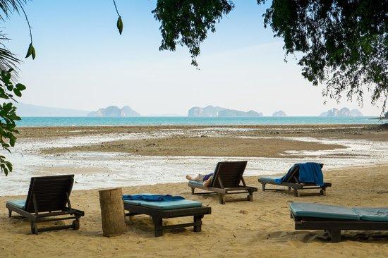Paradise KohYao: Hey, sea, where are you?