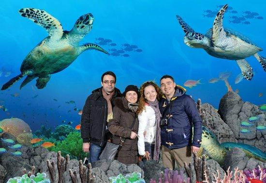 London Sea Life Aquarium 2 For 1