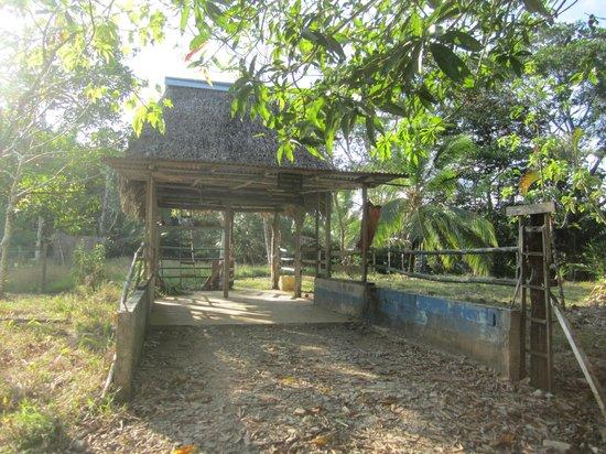 Rio Drake Farm: entrée principale