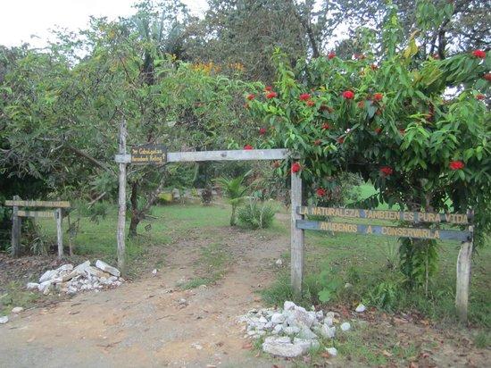 Rio Drake Farm: entrée par la plage