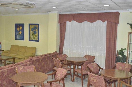 Hotel Patilla: Salón social