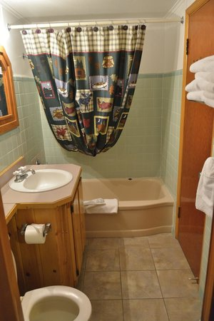 Country Lodge: bathroom
