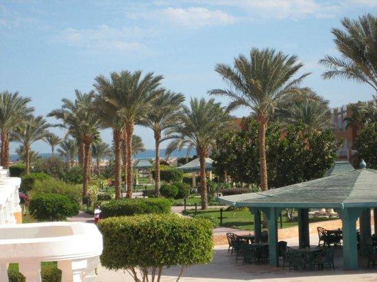 Sunrise Select Garden Beach Resort & Spa : территория