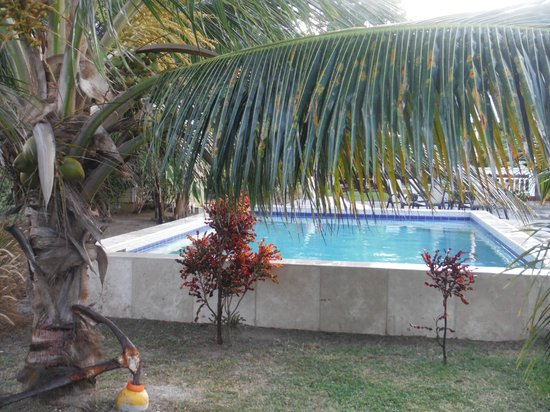 Dutchman's Bay Cottages: The Pool