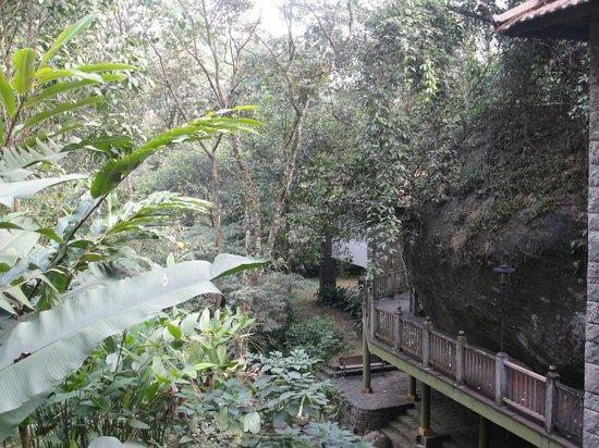 Mayapott Plantation Villa: Hotel Grounds