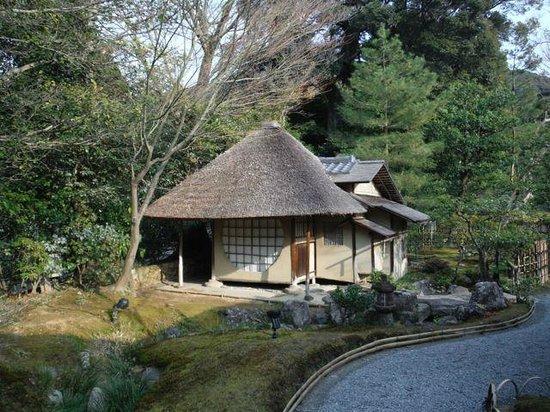 Maifukan : Tea House