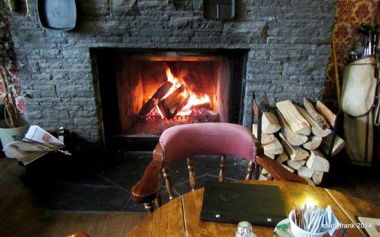 Georgetown Inn: Fireplace in the restaurant/bar