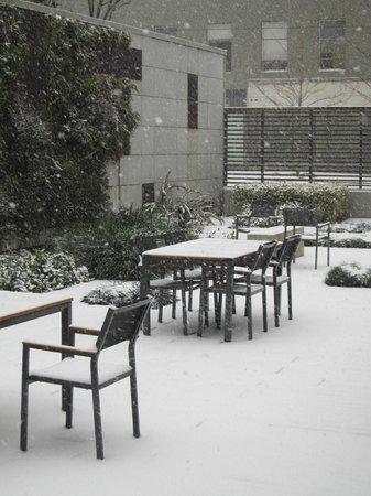 Hotel Modera: Hotel garden