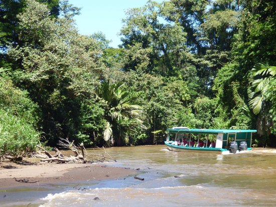 Pachira Lodge: arrivee en bateau