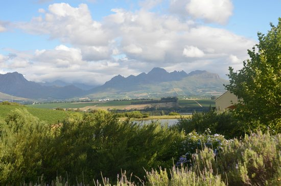 Asara Wine Estate & Hotel: view from the terrace