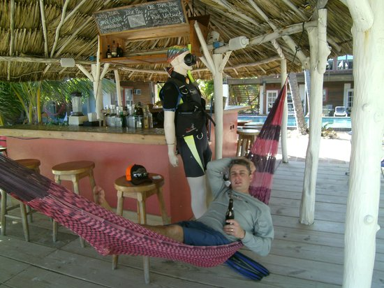 Ambergris Divers Resort: The hammocks by the bar are amazing!