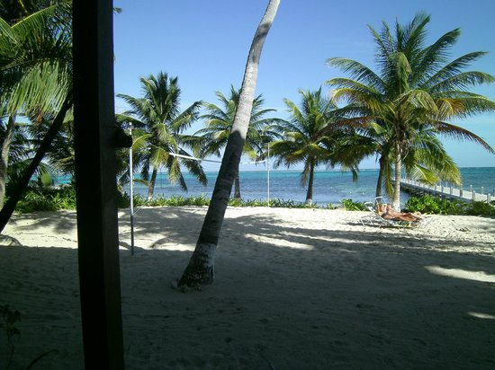 Ambergris Divers Resort: The view from room #8