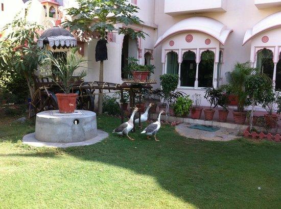 Bharat Mahal Palace: Exteriors
