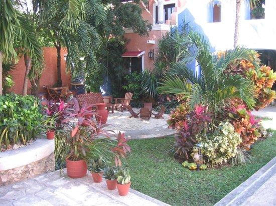 Hotel Casa de las Flores Playa del Carmen: GIARDINETTO