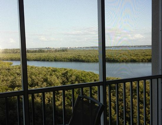 The Westin Cape Coral Resort At Marina Village : Peaceful view from screened-in lanai
