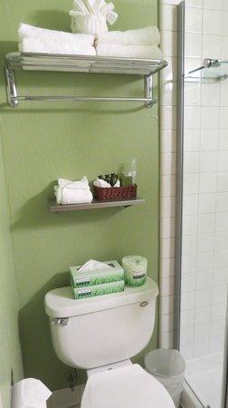 Hotel Fusion: Bathroom