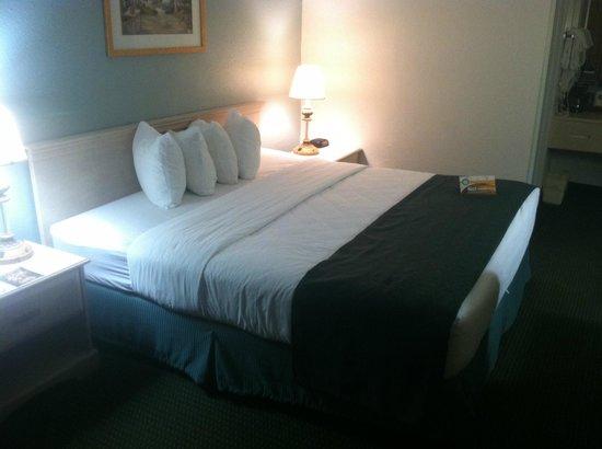 Ramada Hilton Head: King Bed