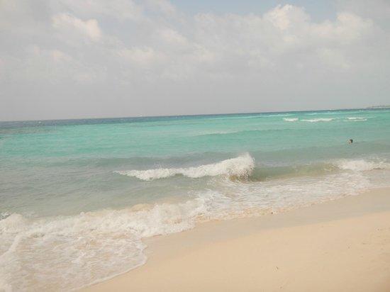 Island Cottage: Maafushi beach