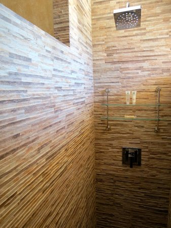 Hotel Buena Vista: Shower.