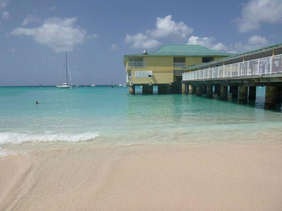 Radisson Aquatica Resort Barbados: Hotel Beach & Pier
