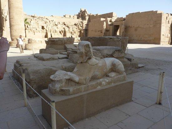 Templo de Karnak: Lwy w świątyni