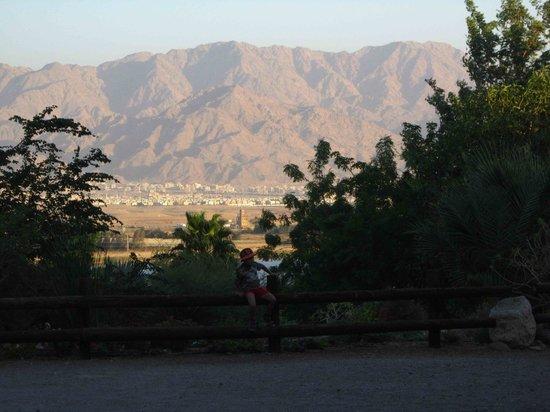 Botanical Garden Of Eilat : botanical gardens eilat 13